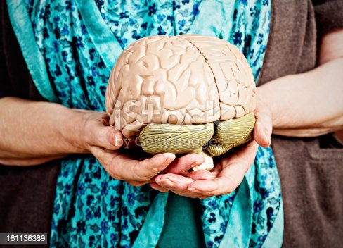 istock Is this Alzheimers? Wrinkled hands hold model brain 181136389