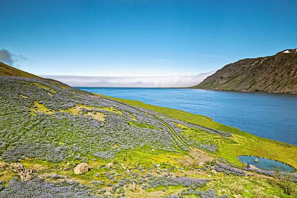 Isafjörður – Foto