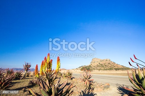 istock Isandlwana in KwaZulu-Natal, South Africa 499716207