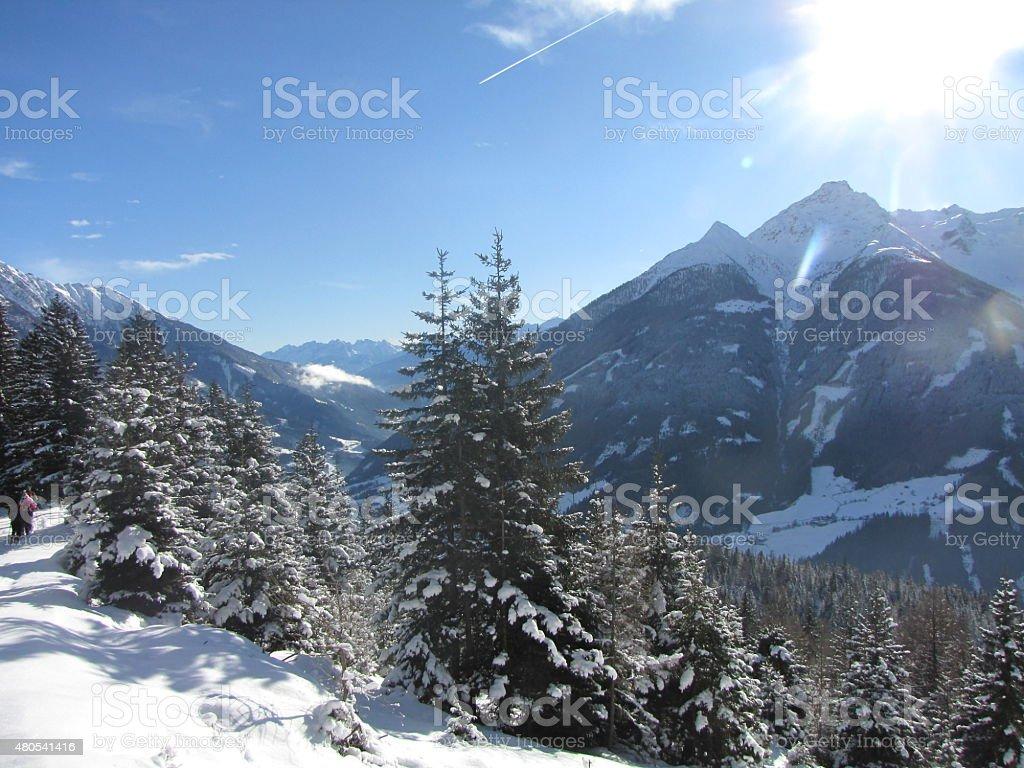 Isel valley near Matrei / Osttirol stock photo