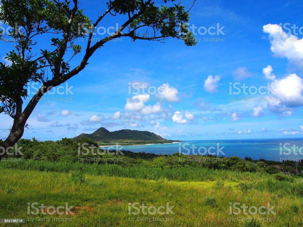 ishigaki island stock photo