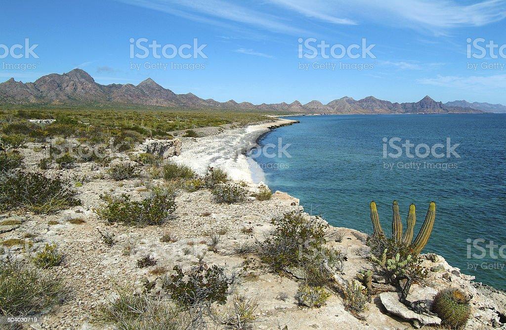 Escena de Isla Carmen desierto - foto de stock