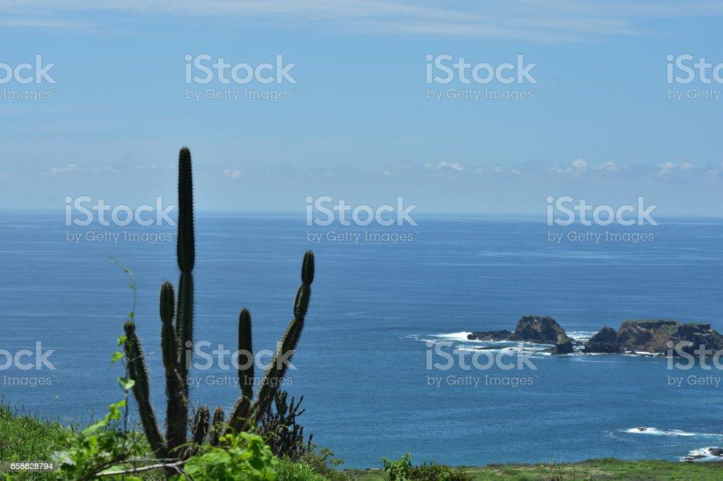 Isla de la Plata, Machalilla Park, Ecuador stock photo