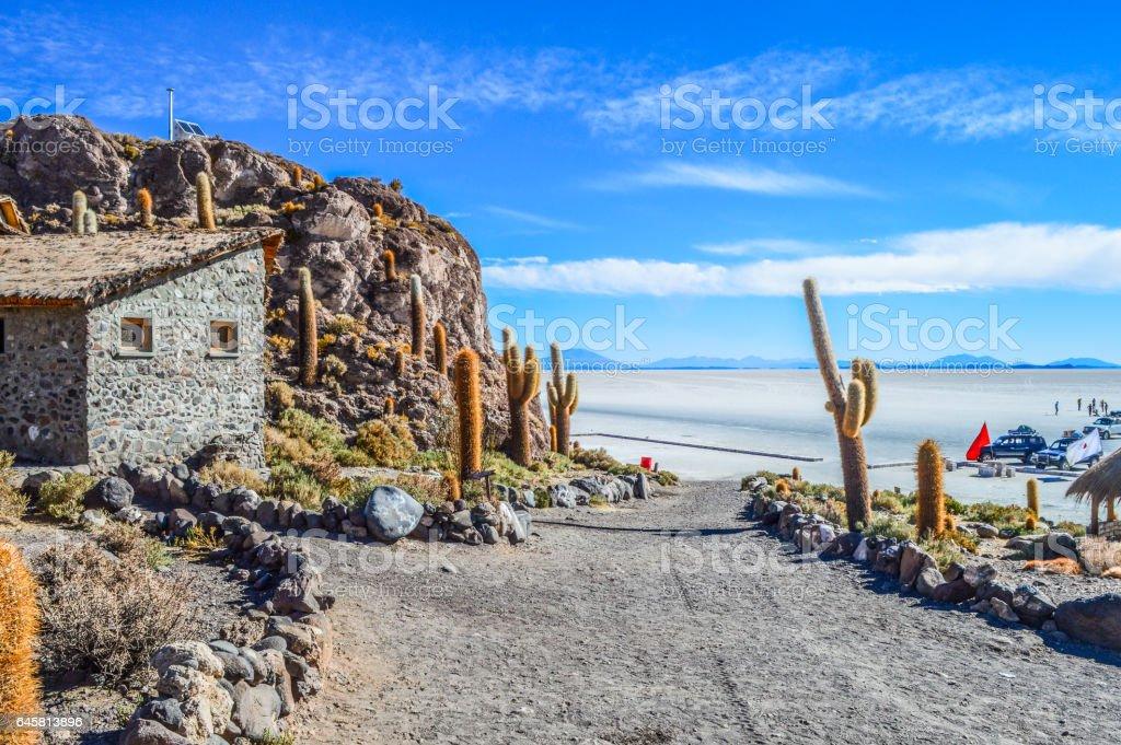 Isla del Pescado at Salar de Uyuni in Bovilia stock photo
