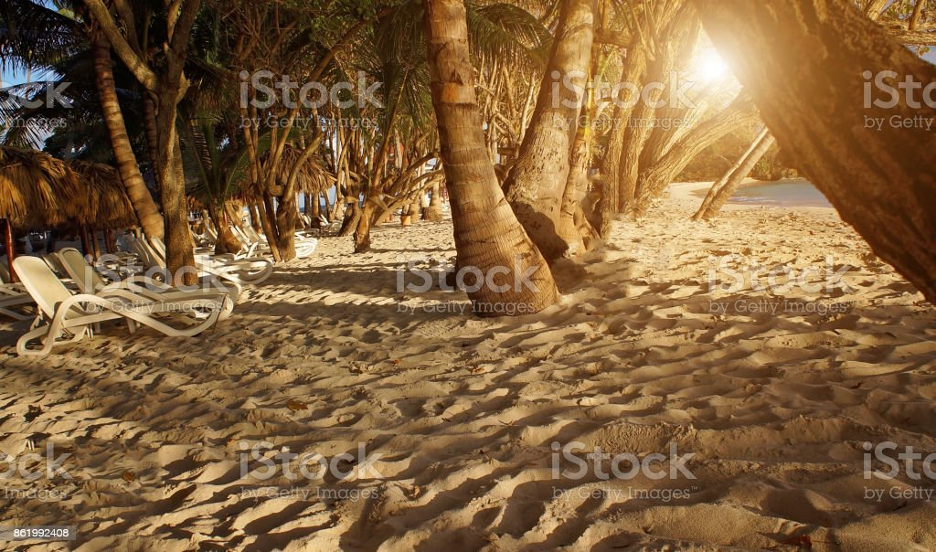 Isla Levantado beach at sunset stock photo