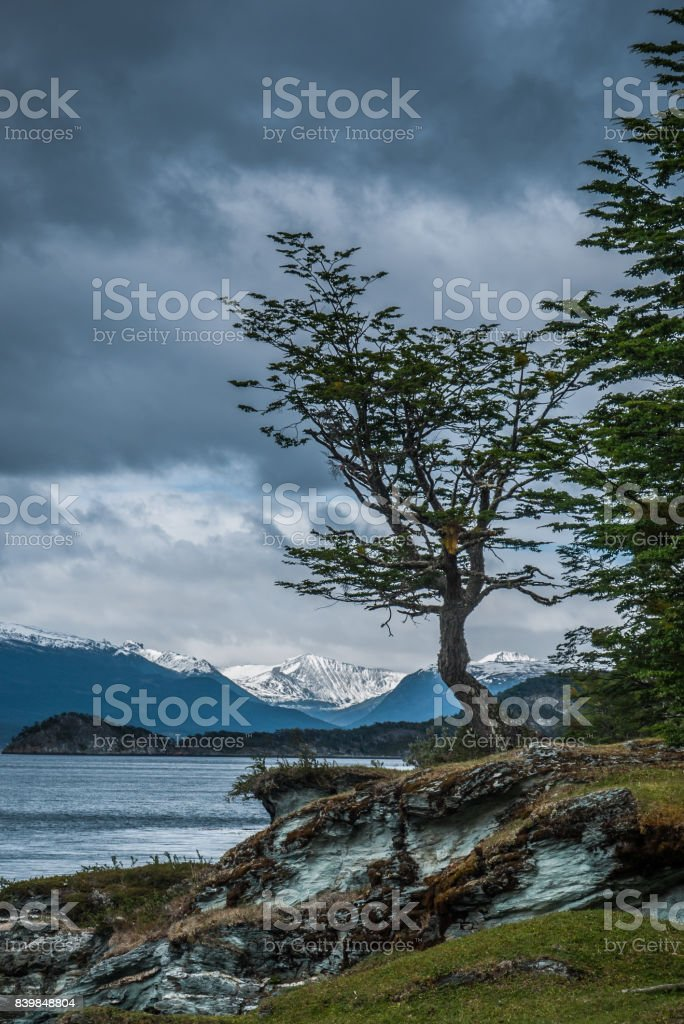 Bahía de la isla Redonda Ensenada en Ushuaia - foto de stock