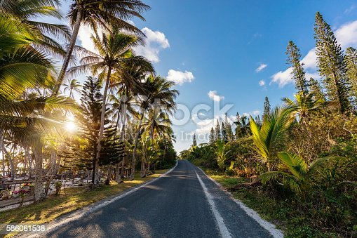 Island country road into beautiful Sunset along tropical Palm Trees in New Caledonia on Maré Island. Maré Island, Loyalty Islands, New Caledonia, Pacific Ocean Islands.