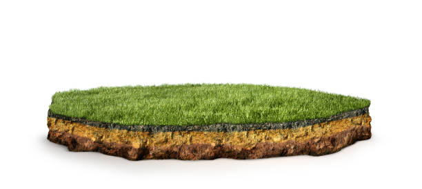 island .Cross section of land with grass. 3d illustration stock photo