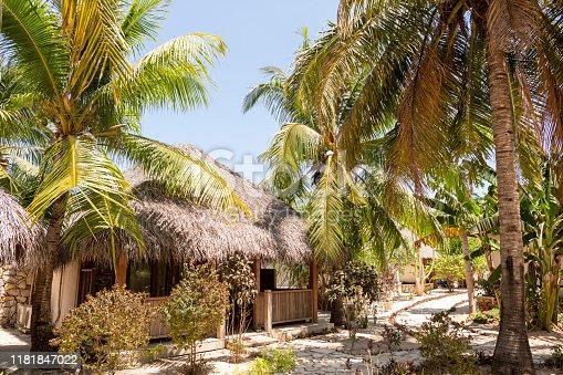 Wide shot tropical island outside bathroom with hammocks