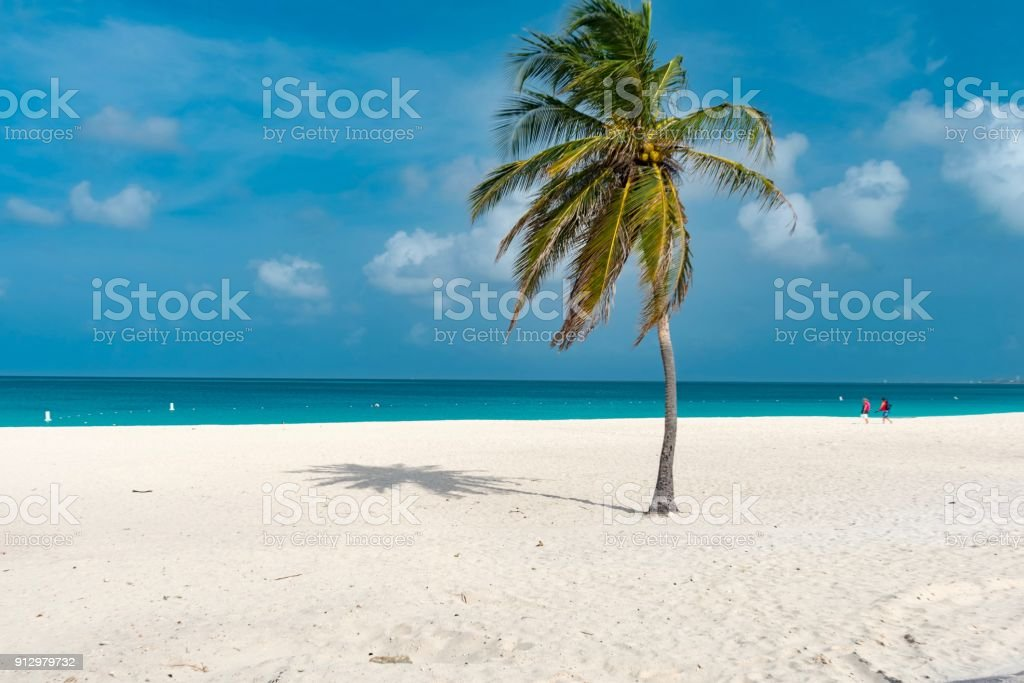 island of Aruba Caribbean stock photo