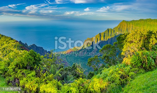 istock Island of Kauai in Hawaii 1131307274