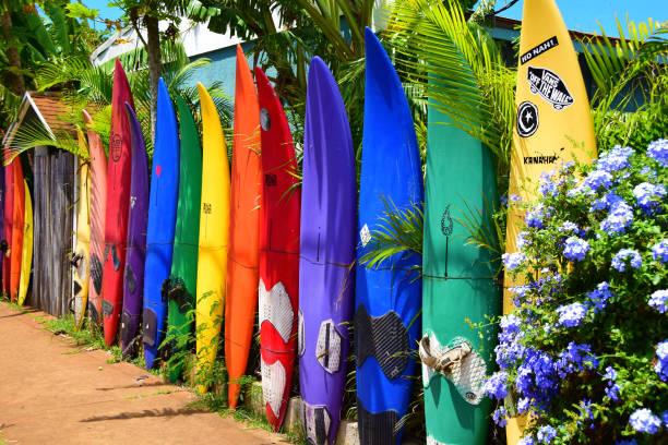 Island of Maui stock photo