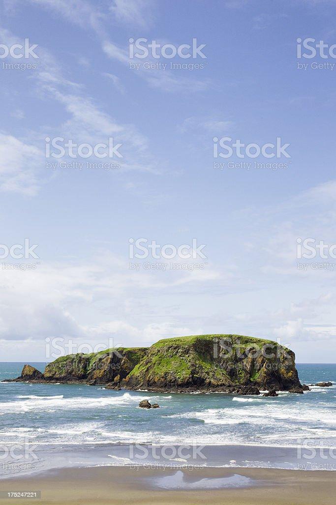 Island Off The Oregon Coast royalty-free stock photo