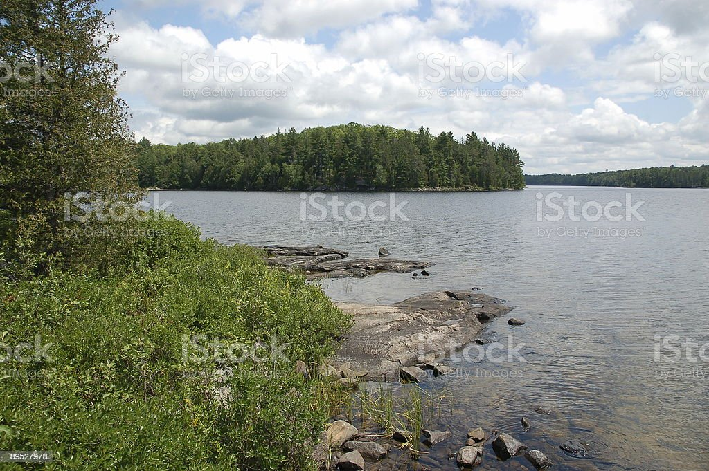 Island on wilderness lake royalty-free stock photo