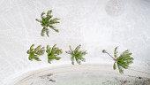 Island Palm Trees White Sand Tropical Beach Aerial View