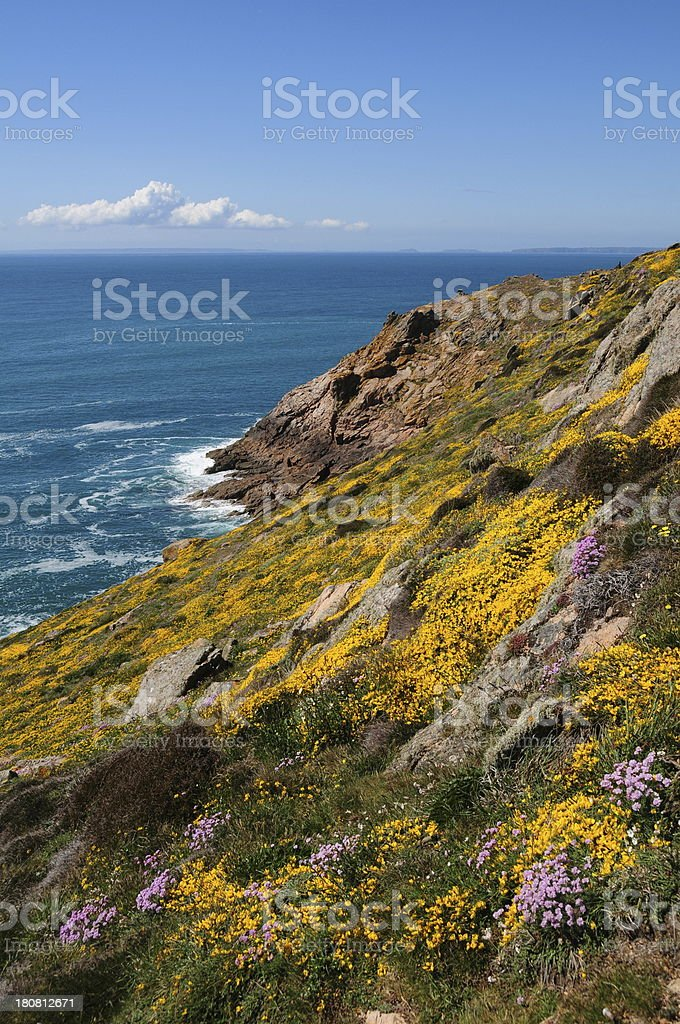 Island spring, Jersey royalty-free stock photo