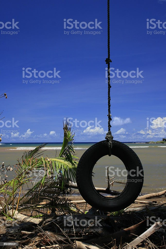 Island tire swing II royaltyfri bildbanksbilder