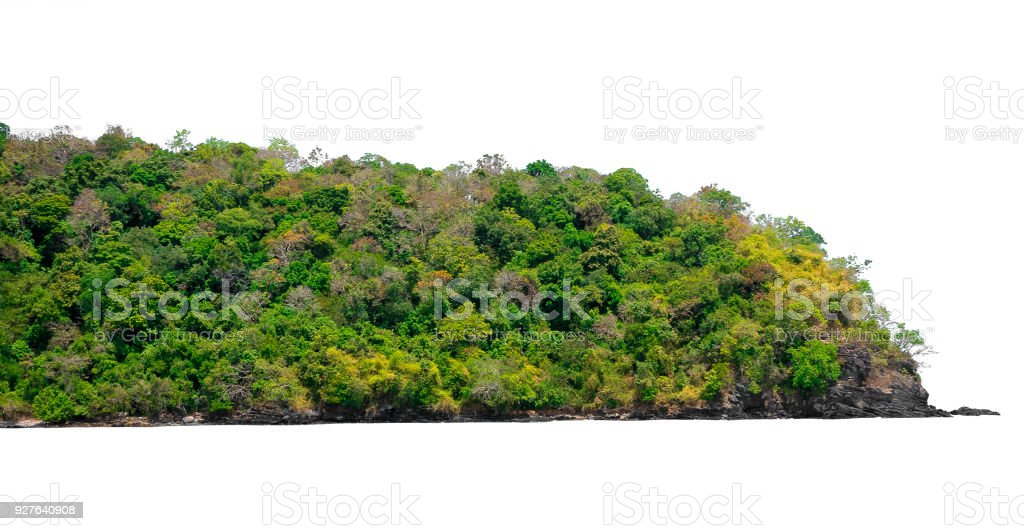 Island with green bush leaves tree forest isolated on white background stock photo