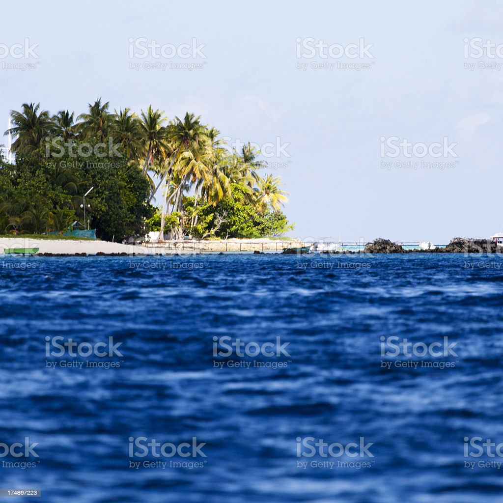 Island with palm trees royalty-free stock photo