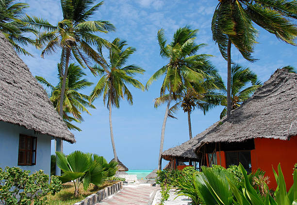 island Zanzibar village Paje stock photo