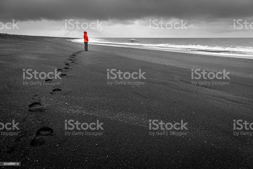 Islandic coast stock photo
