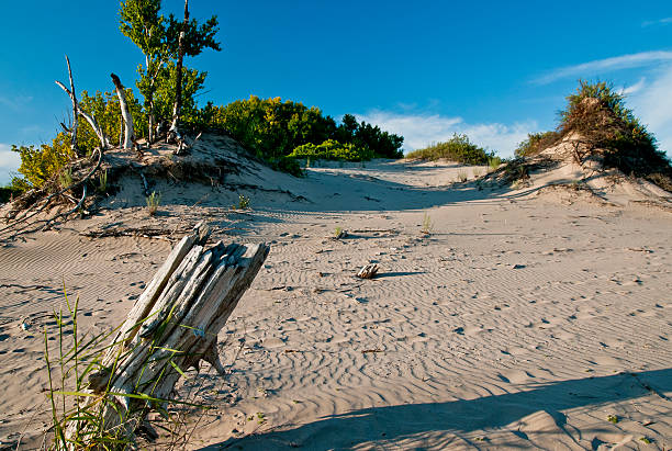 islands in the sand - provincial park stock photos and pictures