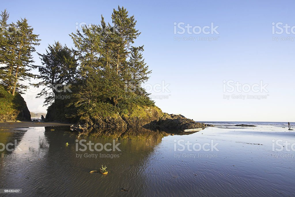 Islands on an colossal sandy beach royalty-free stock photo