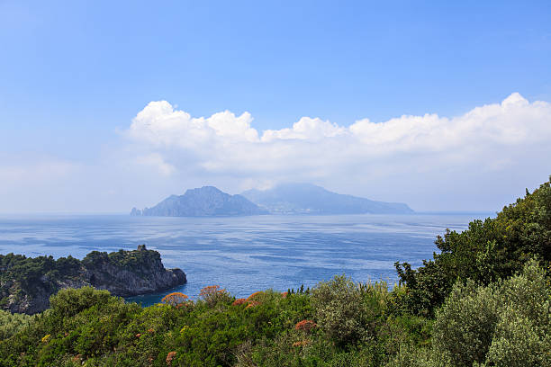 isle of capri und an die amalfiküste-süditalien - baumgruppe stock-fotos und bilder