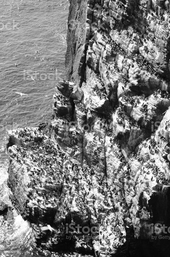 Isle of kan rotswand - Royalty-free Buitenopname Stockfoto