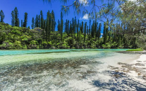 Isle of Pines, New Caledonia stock photo