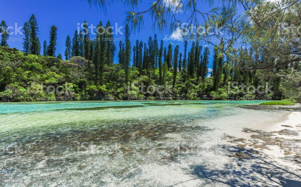 Ile des Pins, Neukaledonien – Foto