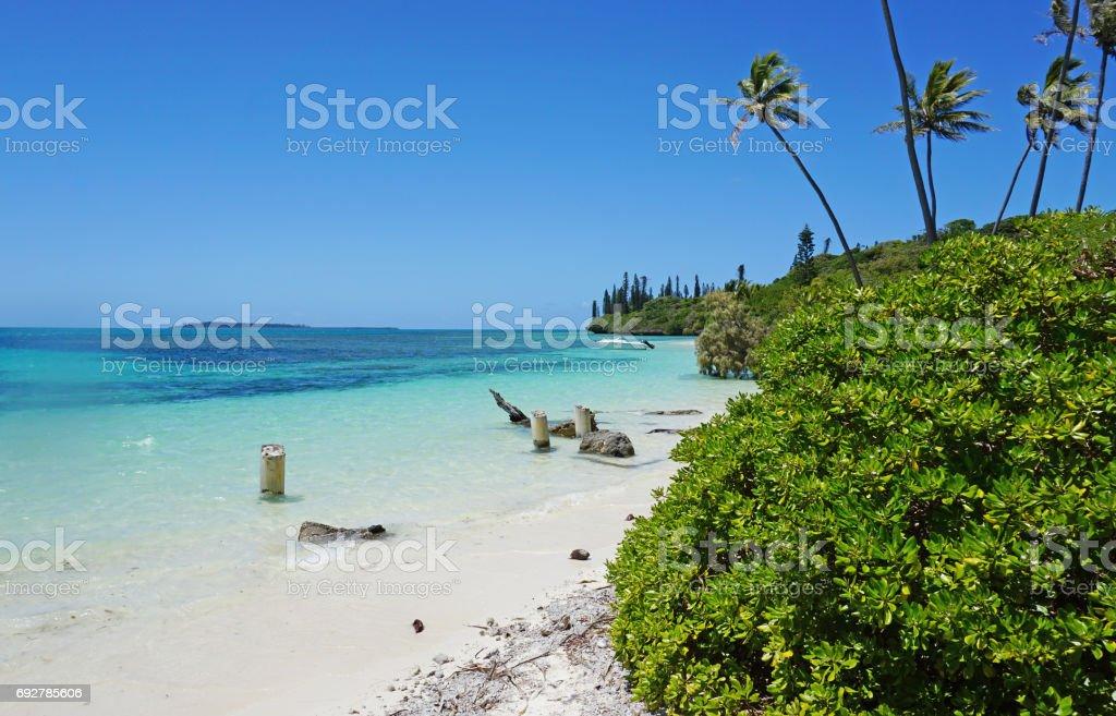 Isle of Pines stock photo