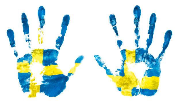 Isolar a impressão de duas mãos com as cores da bandeira sueca, guache - foto de acervo