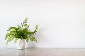 istock Isolate white jar and tropical green leaves place on grey marble surface table and white and clear Concrete wall. Abstract background  and nobody template with relaxation feeiling clean and clear. 1189370059