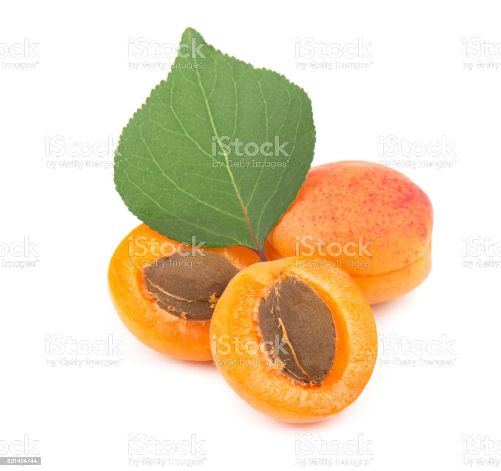 Isolated apricot. Fresh cut apricot fruits isolated on white background stock photo