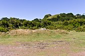 Isolated bench in the grassland behind a mound (Fanal, Madeira, Portugal, Europe)