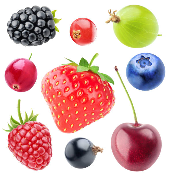 isolated berries collection - ripe stock photos and pictures