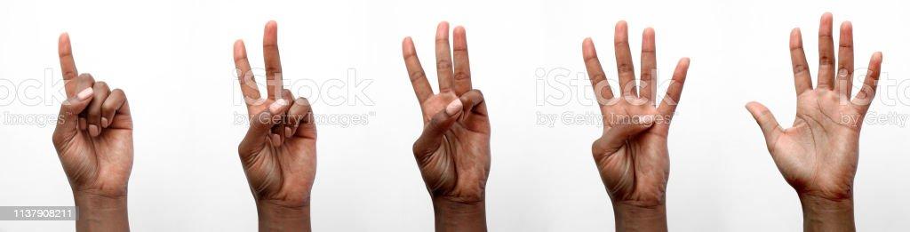 Mão africana preta isolada que conta em dedos - Foto de stock de Adulto royalty-free