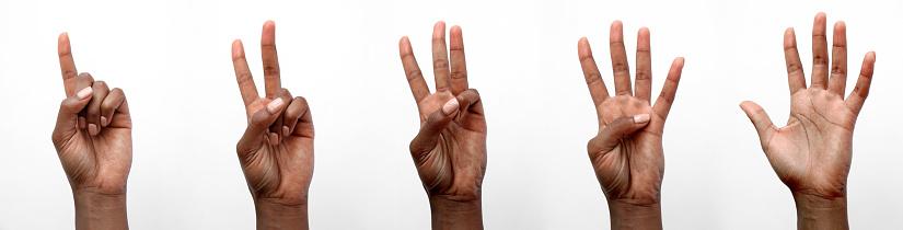 Foto de Mão Africana Preta Isolada Que Conta Em Dedos e mais fotos de stock de Adulto