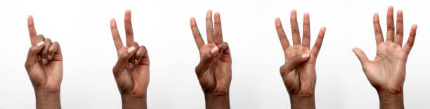 mão africana preta isolada que conta em dedos - dois objetos - fotografias e filmes do acervo