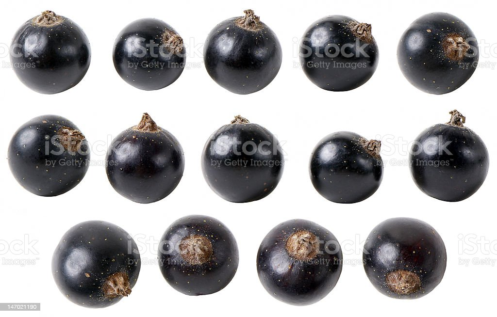 Isolated black currant fruits royalty-free stock photo
