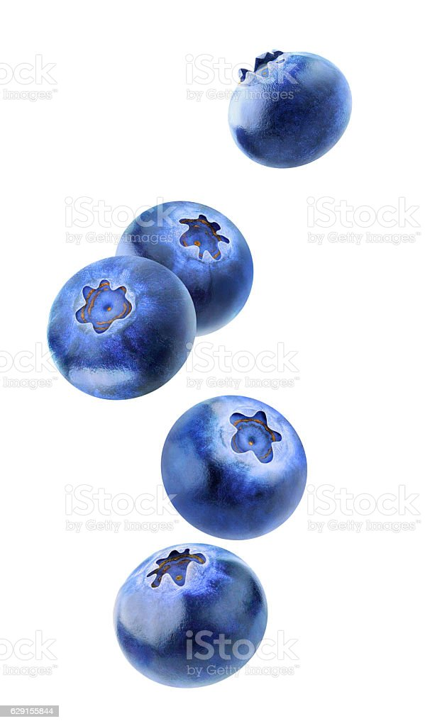 Isolated blueberries flying in the air stock photo