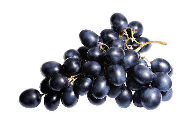 Isolated bunch of black grapes on a white background See more in lightbox: Food ingridients on white background merlot grape stock pictures, royalty-free photos & images