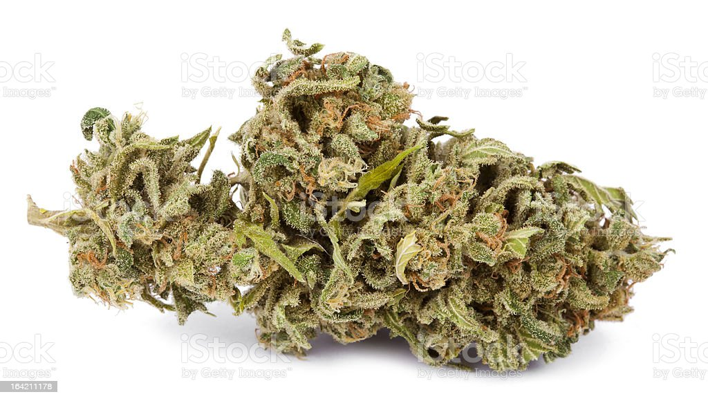 Isolated Cannabis Bud stock photo