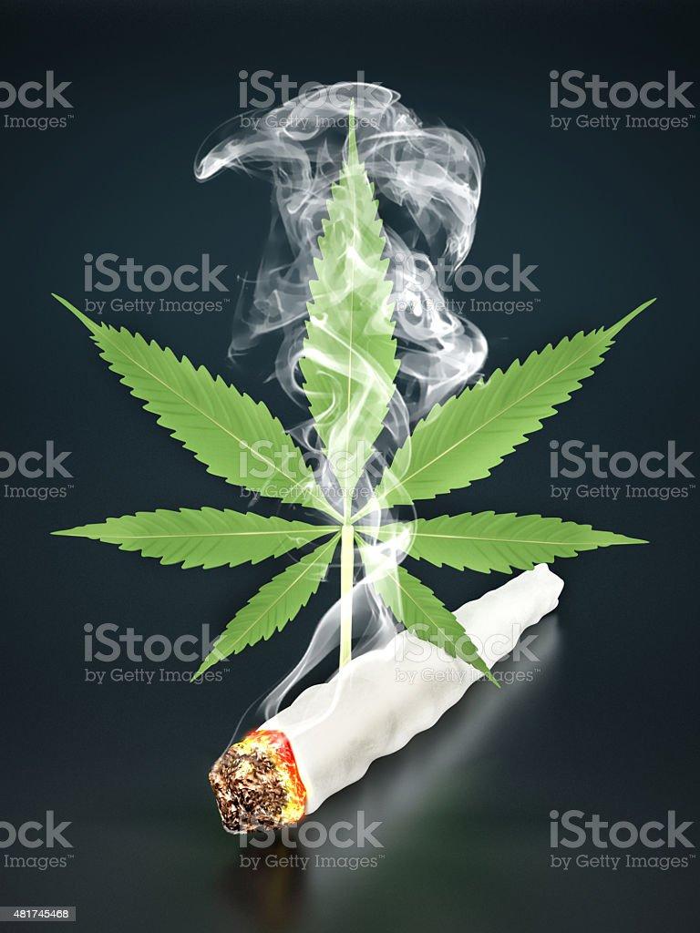 Isolated cannabis leaf stock photo