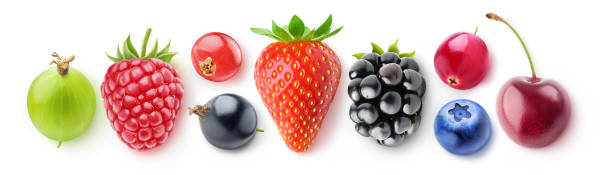 colección aislado de las bayas - arándano rojo fruta baya fotografías e imágenes de stock