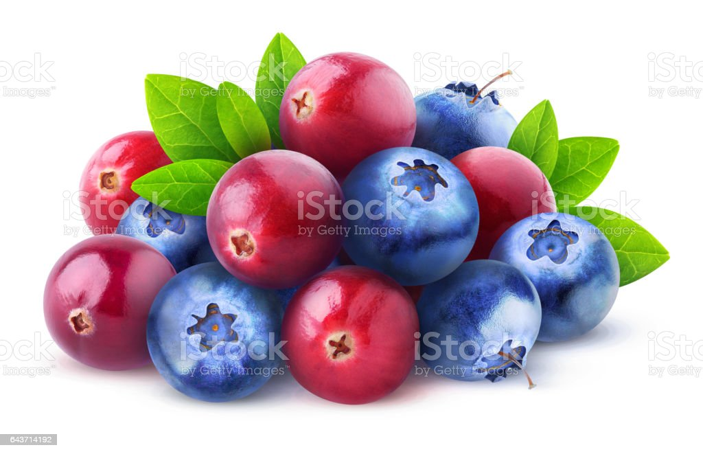 Isolated cranberries and blueberries stock photo