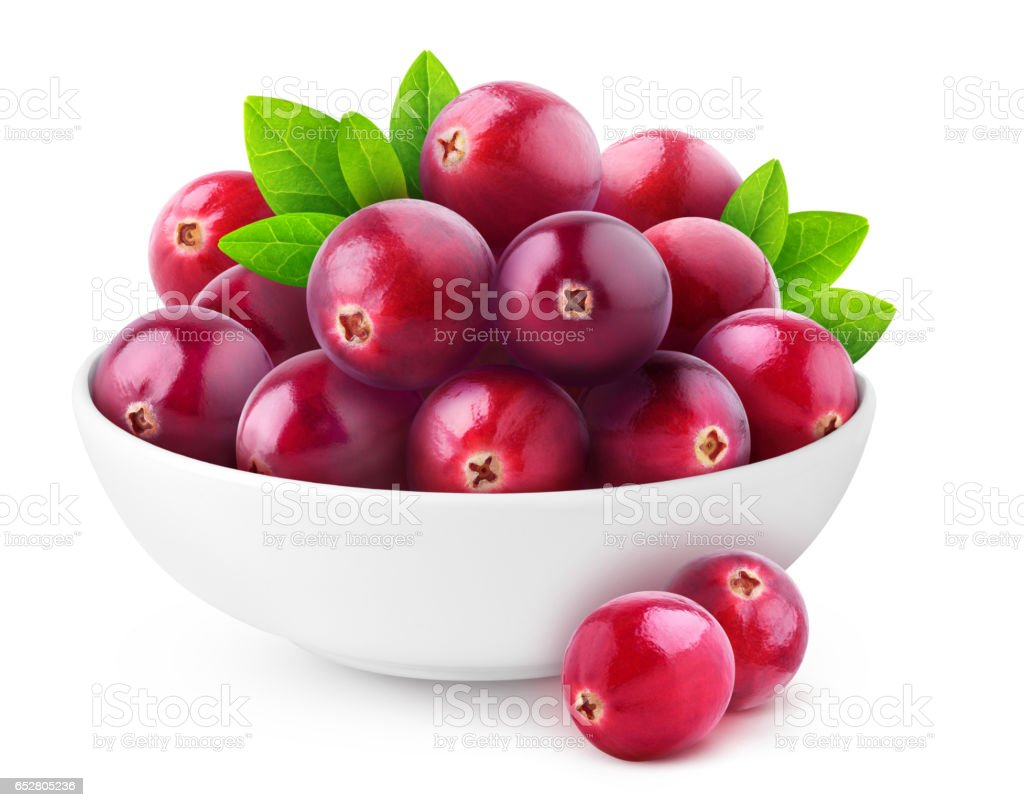 Isolated cranberries in a bowl stock photo