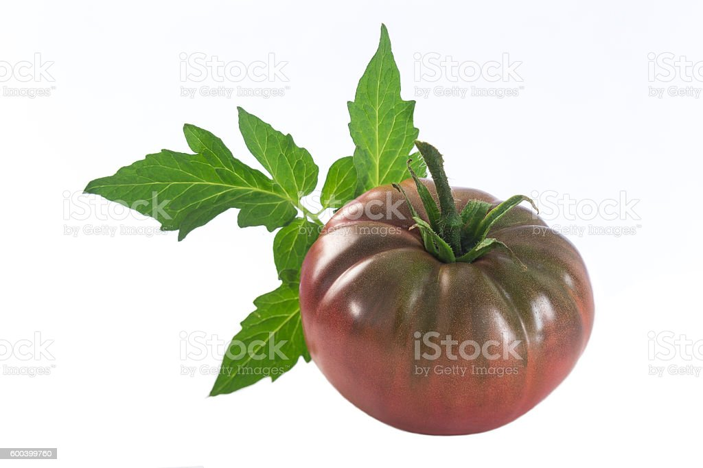 isolated dark red heirloom tomato stock photo