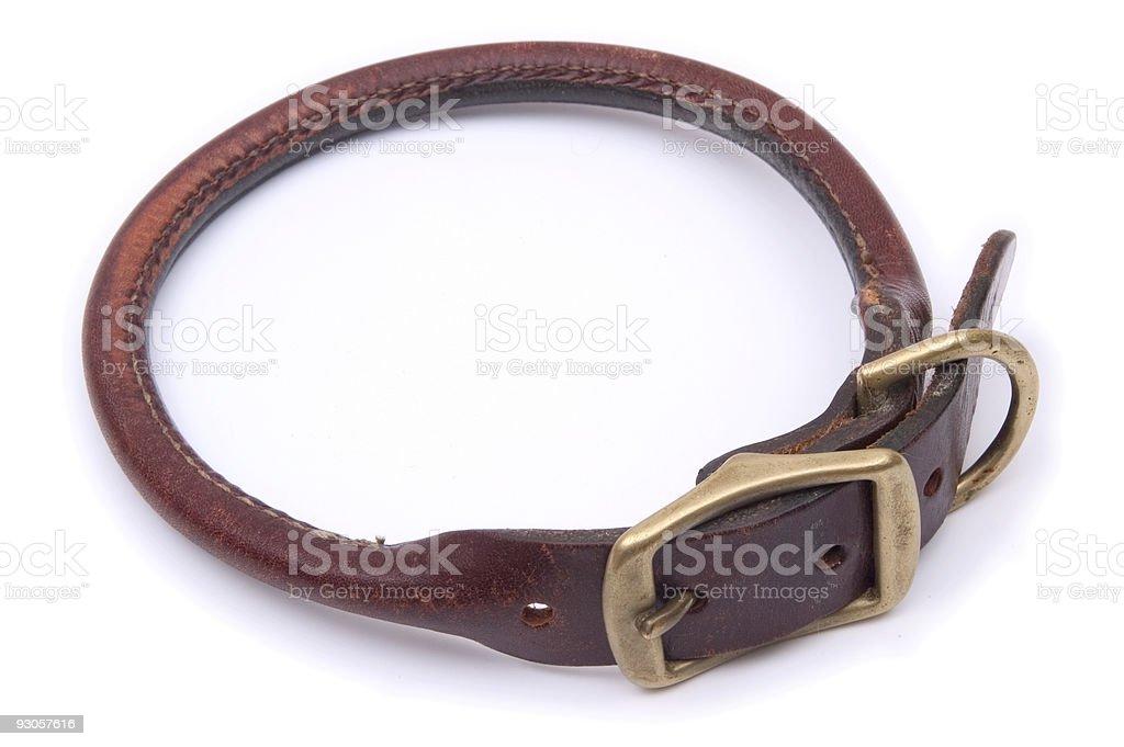 Isolated Dog Collar royalty-free stock photo